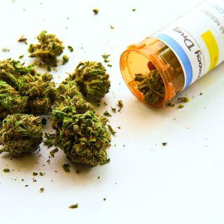 Marijuana Effects And Treatment (3 CE)